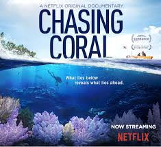 https://thebestyouexpo.com/uk/wp-content/uploads/2018/01/Chasing-Coral.jpg